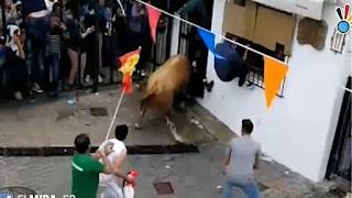 Ισπανία: 74χρονος σκοτώθηκε από χτυπήματα ταύρου σε τοπικό φεστιβάλ