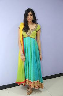 Actress Adah Sharma Stills in Salwar Kameez at Garam Movie Release Date Press Meet  0035