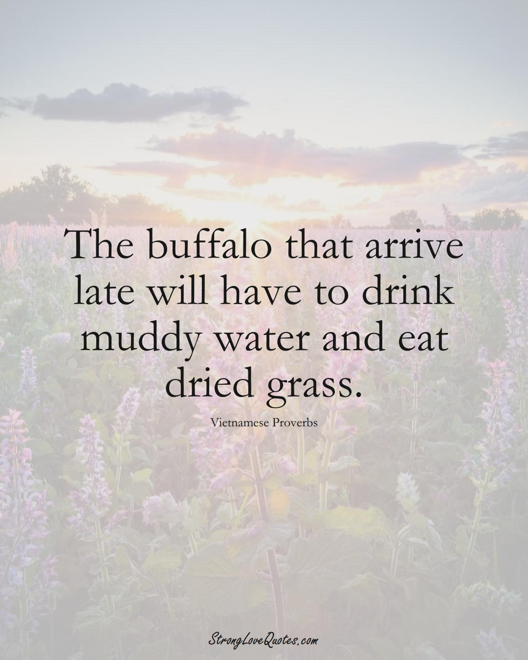 The buffalo that arrive late will have to drink muddy water and eat dried grass. (Vietnamese Sayings);  #AsianSayings