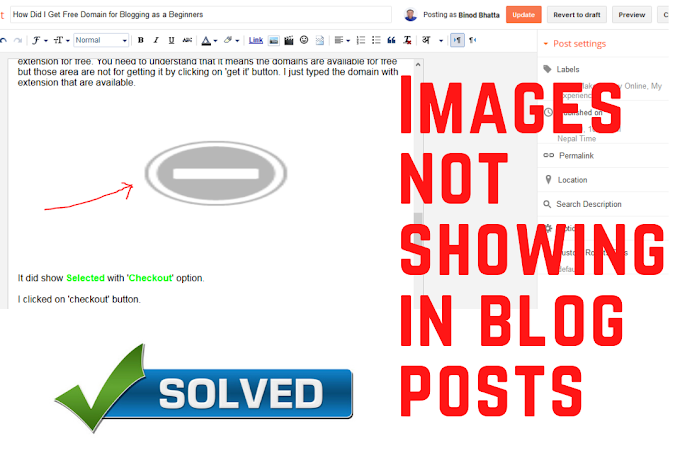 Uploaded Images in Blogger Are Not Showing: How Did I Solve?