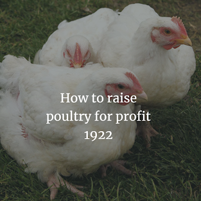 Download How to raise poultry for profit 1922 Business PDF Ebook