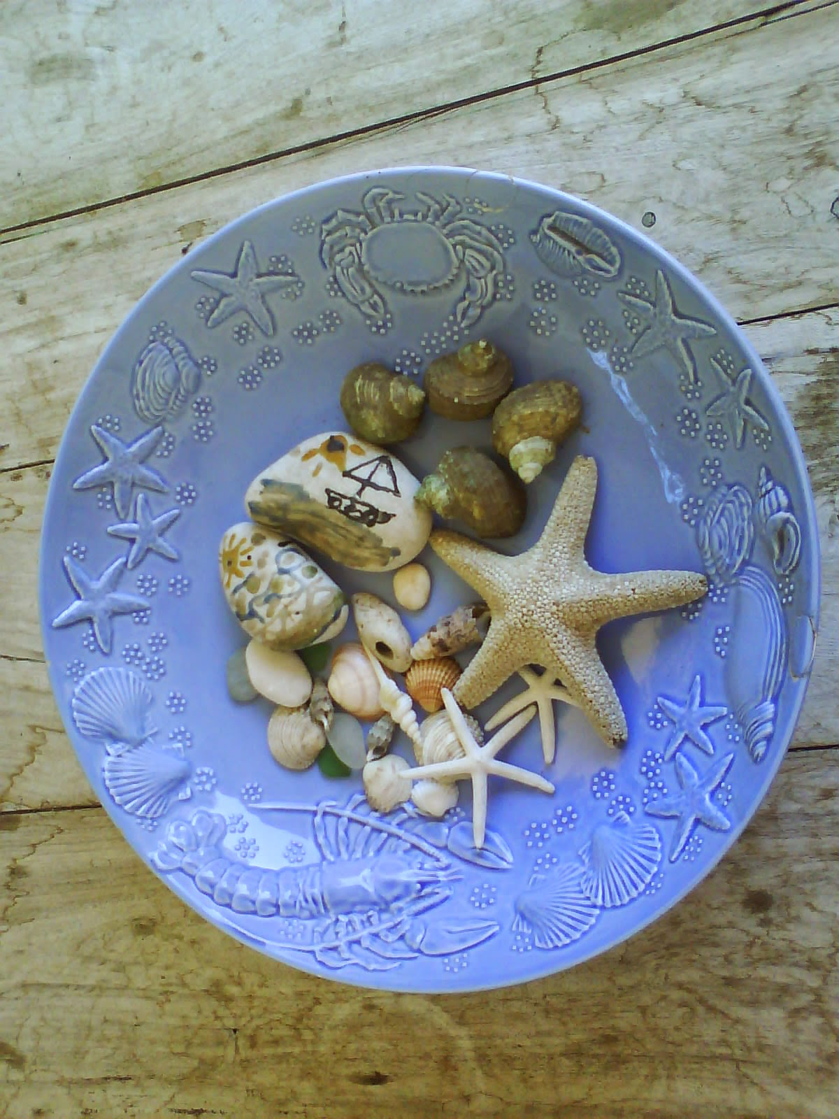 Pebbles and sea shells
