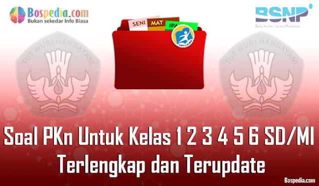 Soal PKN Untuk Kelas 1 2 3 4 5 6 SD/MI Terlengkap dan Terupdate