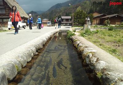 Lingkungan Biotik dan Abiotik