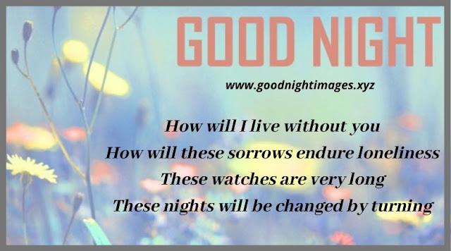 Good Night Wishes Images   good night photo