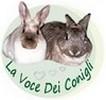 http://www.lavocedeiconigli.it/Coniglinani.htm