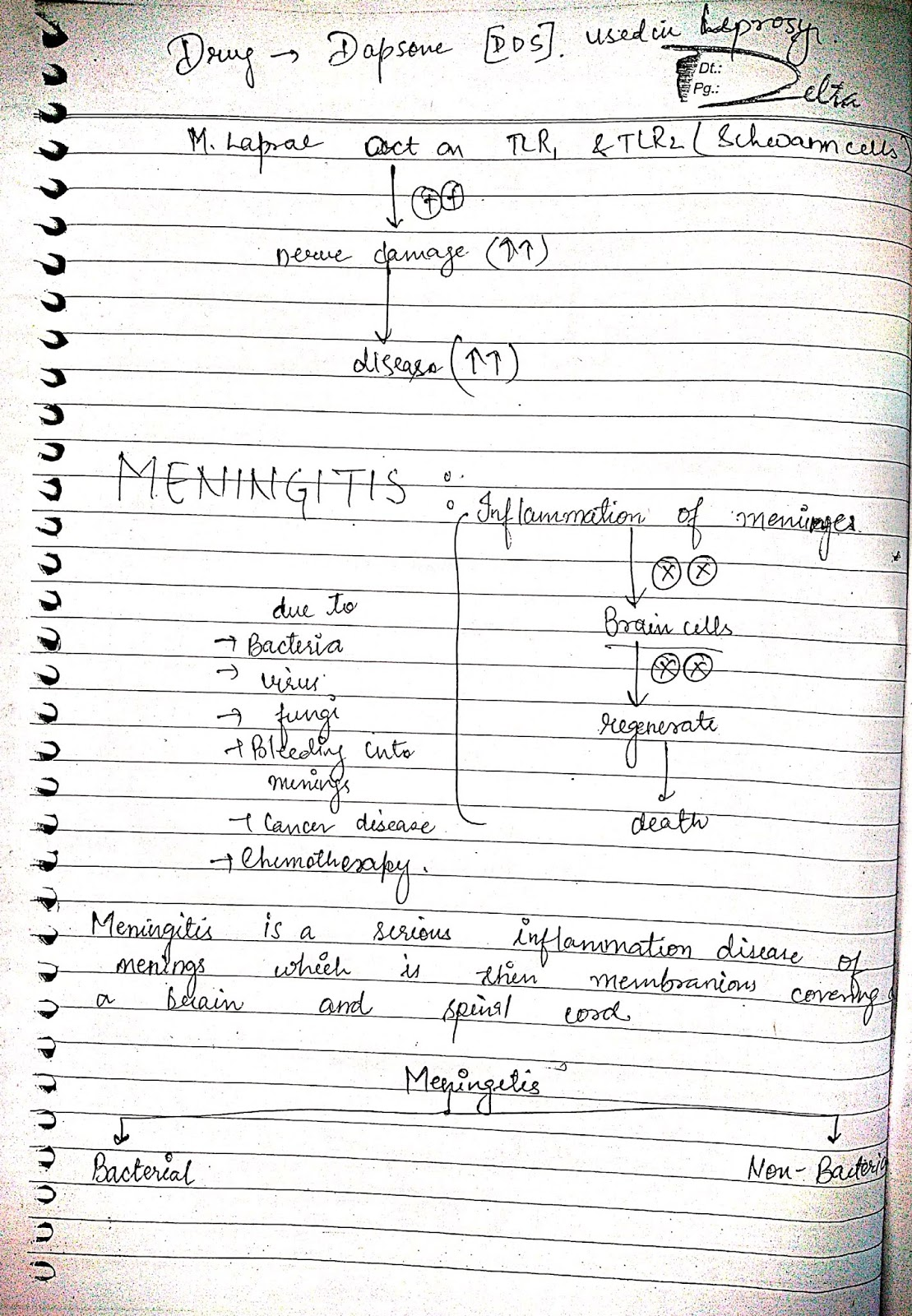 pathophysiology - meningitis
