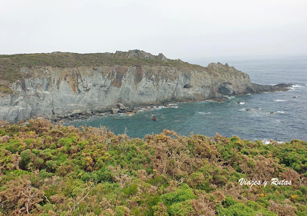Piornos de la Senda costera Naviega, Asturias