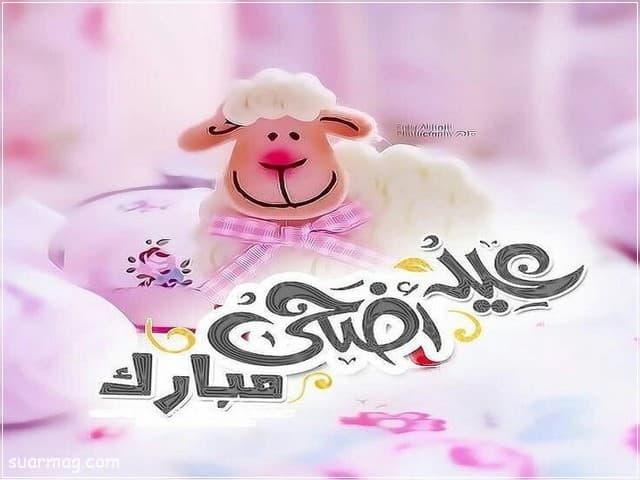 بوستات عيد الاضحى 2 | Eid Al-Adha Posts 2