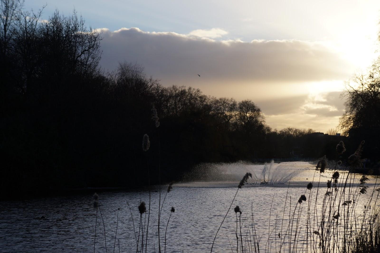 lake view at st james's park