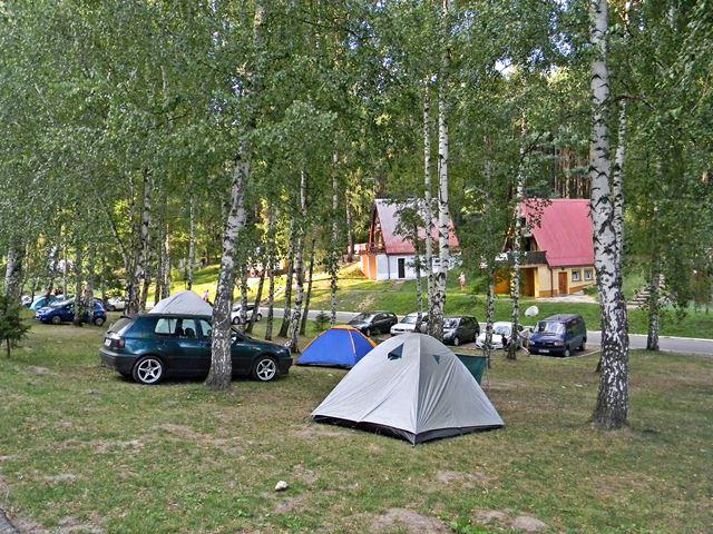 Nysa, Skorochów, domki, brzozy