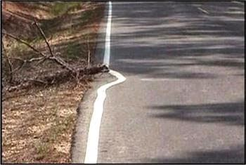 funny African skew road markings picture