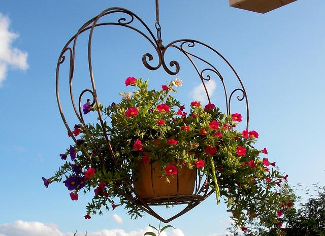 Suspension de fleurs dans le vieux-Lyon