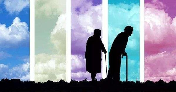 雙腿決定心臟健康,別讓壽命減在腿上!60歲開始都不晚(養腿保健操)