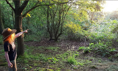 TBCSmiles 83 months July 2021 Young boy in woodland bathed in glow, points to where the sun is setting slightly off screen