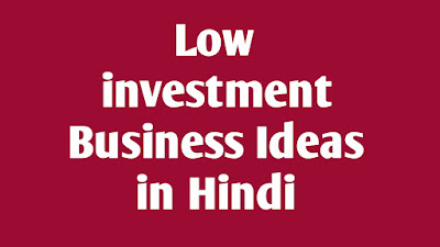 Low investment Business ideas in Hindi, Laghu udyog in Hindi