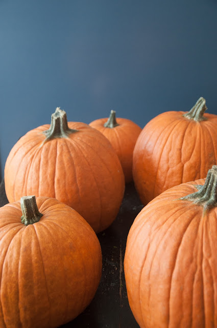 Orange pumpkins against blue background