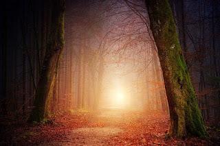 Cahaya Sebagai Gelombang