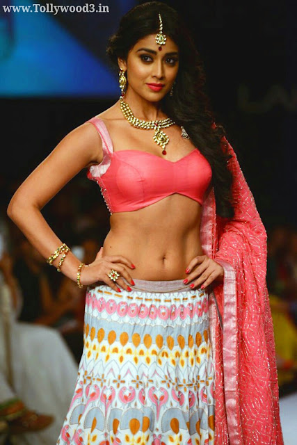 Shriya Saran Height and Weight and Body Measurements