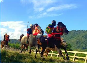 Lepadi (Arena Pacuan Kuda Tradisional) wisata dompu ntb