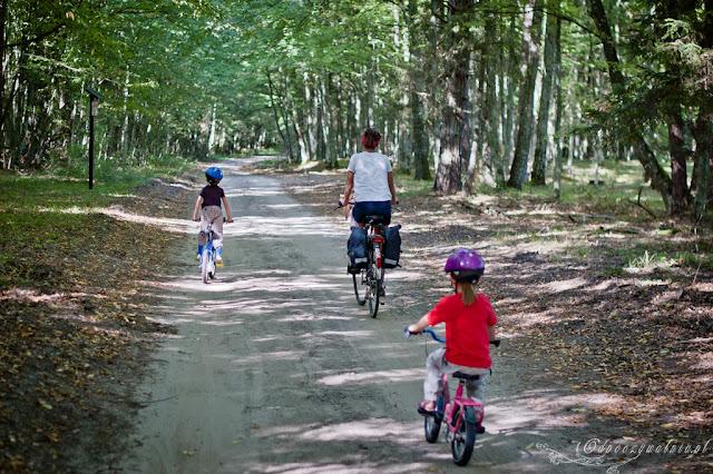 rower dzieci, wakacje na rowerach, puszcza bialowieska z dziecmi