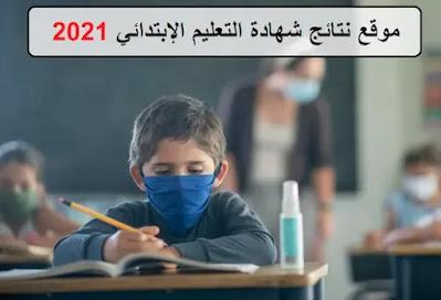 رابط نتائج شهادة التعليم الابتدائي 2021