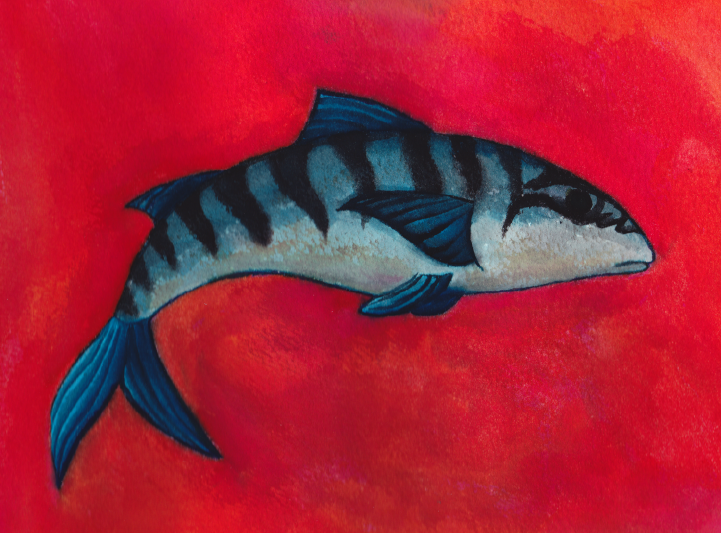 Mackerel painting - Jen Haugan Animation & Illustration