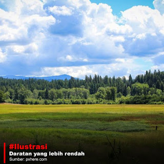 Tips Mencari Air di Gunung dan Hutan Saat Tersesat