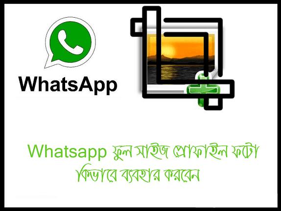 WhatsApp এ ফুল সাইজ প্রোফাইল ফটো সেট করুন Cropping ছাড়া