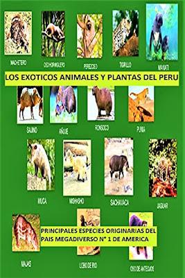 ESPECIES ANIMALES Y VEGETALES DEL PAIS MEGADIVERSO NUMERO 1 DE AMERICA