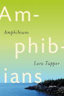 book cover of Amphibians is the new short story collection from Lara Tupper