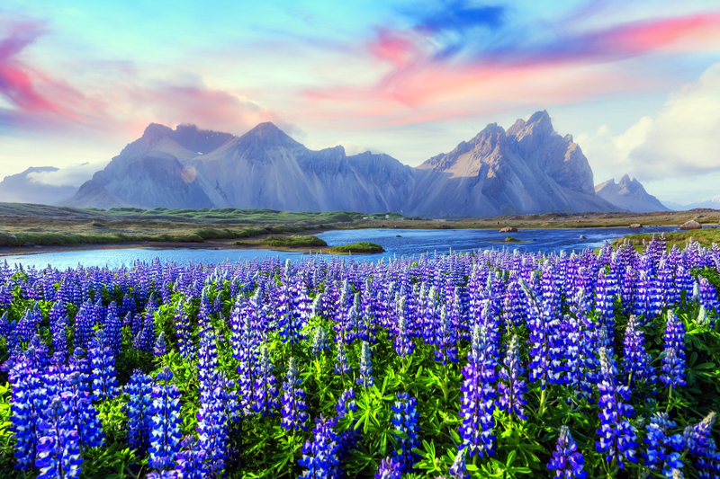 Iceland is reopening to tourists from June 15, and every arrival will get a free COVID-19 test