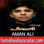 https://www.humaliwalyazadar.com/2019/02/aman-ali-noha-ayyam-e-fatima-2019.html