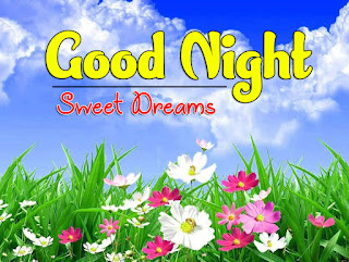 Latest Beautiful Good Night Wallpaper Free Download %2B21