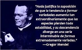 Creyentes Intelectuales Gregor Mendel Genética Vs Darwinismo