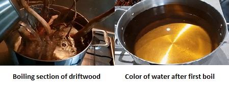 Boiling driftwood