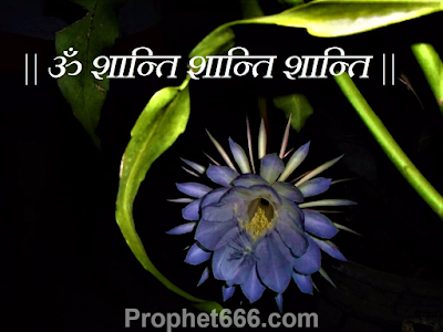 Hindu and Jain Shanti Mantra for Freedom from All Problems