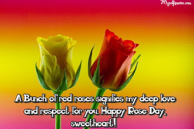 Happy Rose Day 2020 Wishes, Messages, Greetings For Rose Day