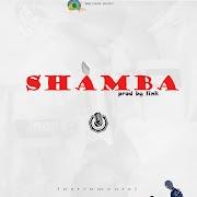 Link _ shamba (free beat instrumental)