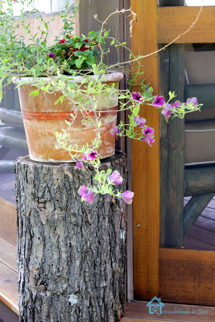 tree trunk serves as table for planter