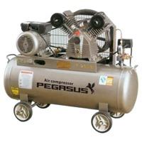 Máy nén khí Pegasus TM-V-0.25/12.5-100L