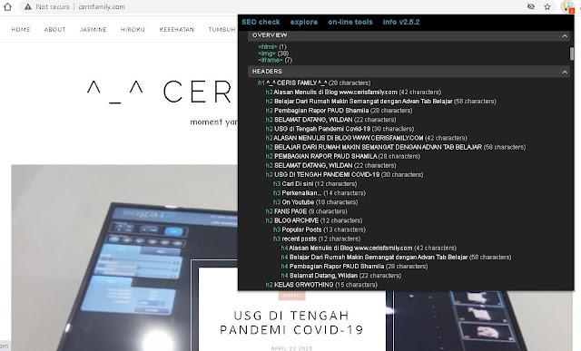 Meta SEO Inspector untuk cek kondisi Blog