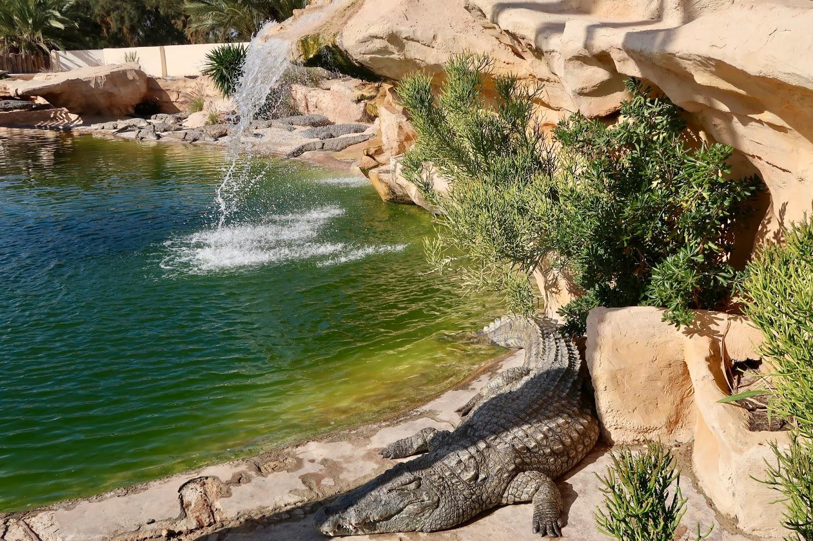 Parc Djerba Explore 2019