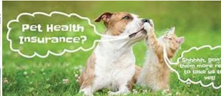 Pet медичне страхування