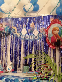 Frozen Decor for Birthday
