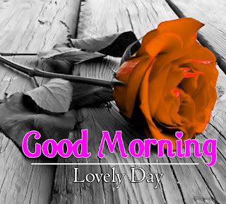 New Good Morning 4k Full HD Images Download For Daily%2B98