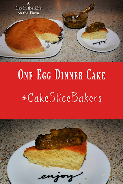 One Egg Dinner Cake with Rhubarb Compote pin