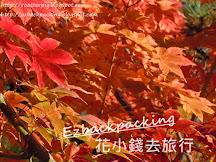 2019年大阪+關西夜楓紅葉祭情報(10月12日更新)