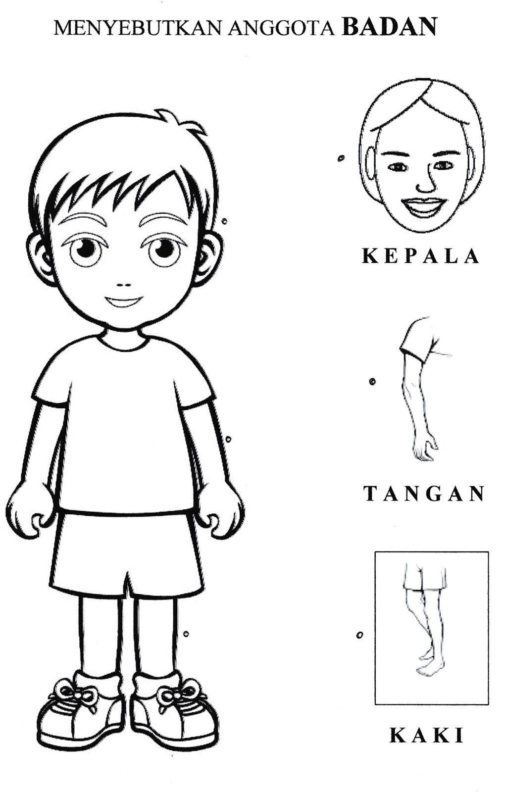 Worksheets Worksheet-anggota-tubuh lebih dari 100 mewarnai gambar anggota tubuh manusia pada kegiatan ini anak diharapkan bisa menyebutkan bagian dengan pembanding dan tubuhnya