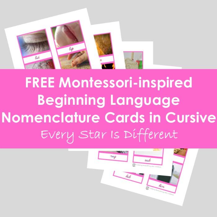 Beginning Language Nomenclature Cards in Cursive